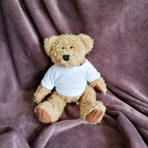 Custom Print teddy bear